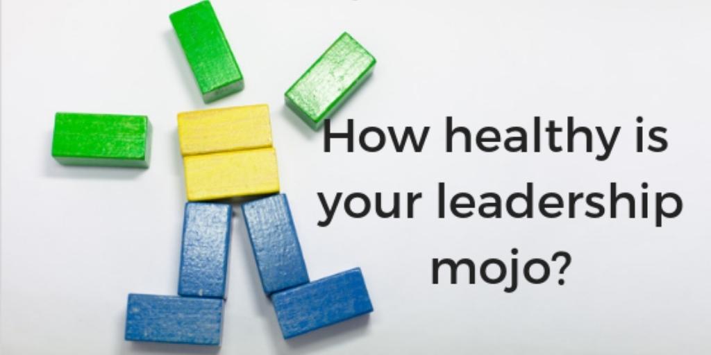 Healthy Leadership Mojo Renée Giarrusso