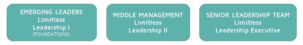 Limitless Leadership™ Pathway - Renée Giarrusso