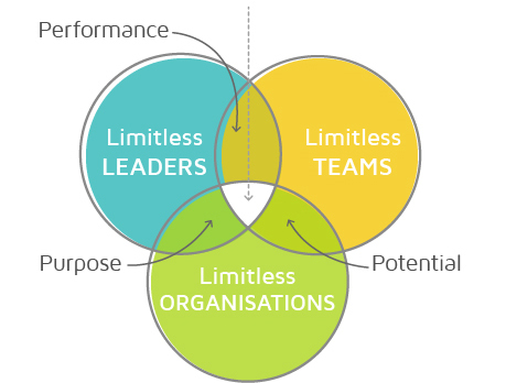 Creating a Limitless Culture