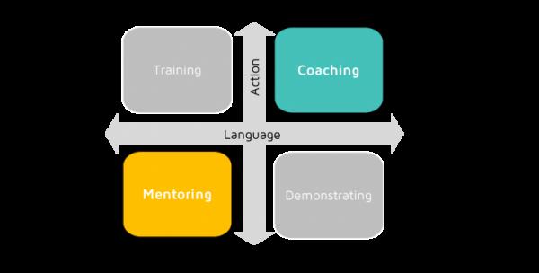 Executive Mentoring & Coaching